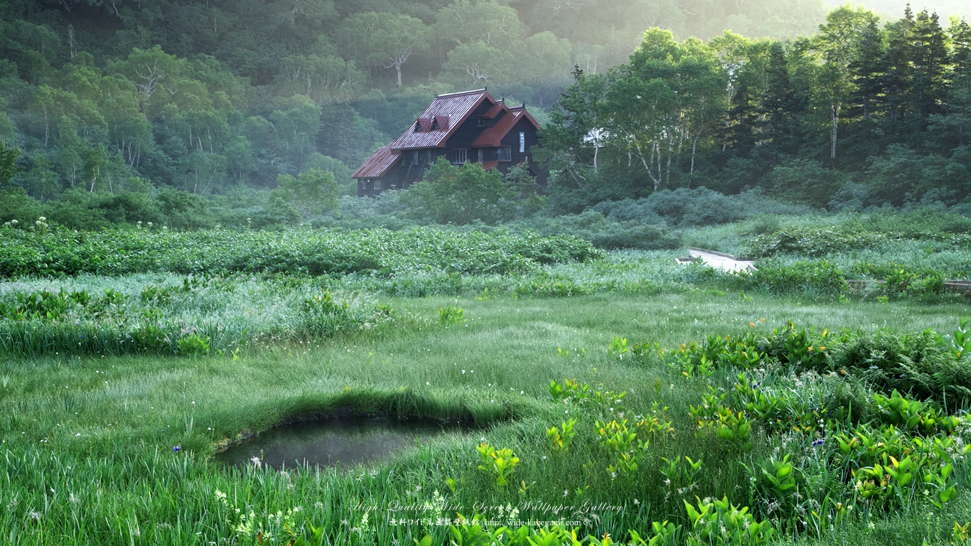 自然風景のワイド壁紙 1366x768 栂池自然園 無料ワイド高画質壁紙館