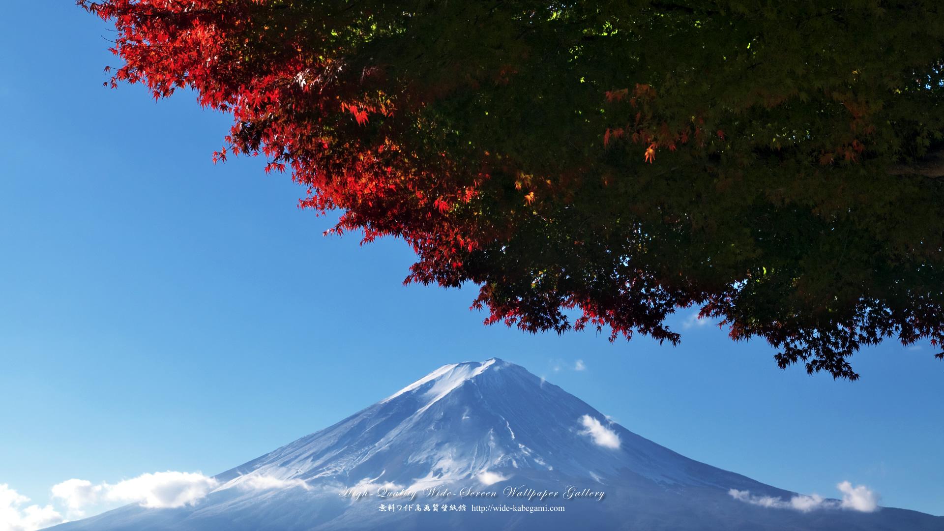 富士山のワイド壁紙 1920x1080 富士山と紅葉 無料ワイド高画質壁紙館