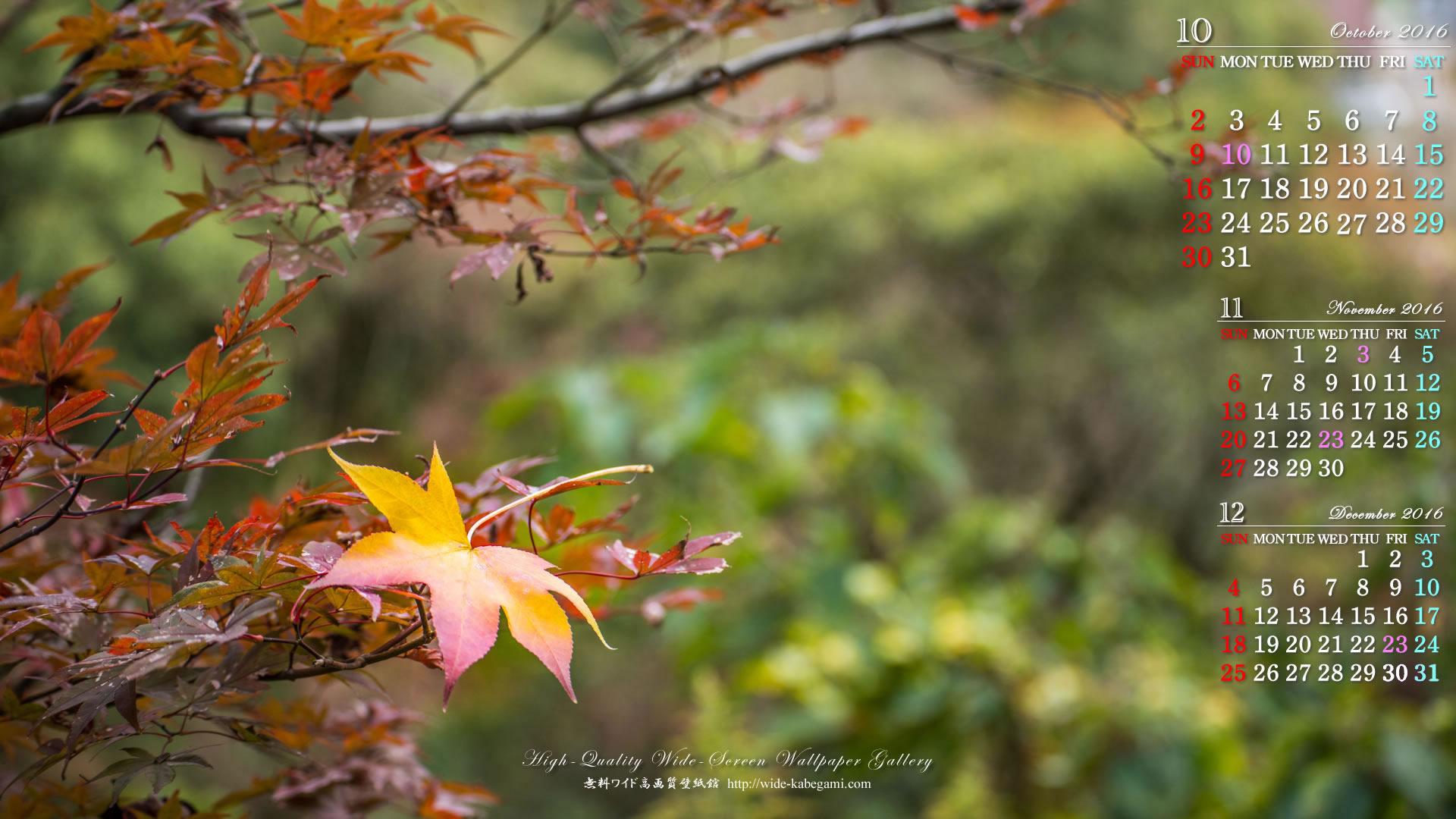 10月のワイド壁紙カレンダー 秋の訪れ 無料ワイド高画質壁紙館